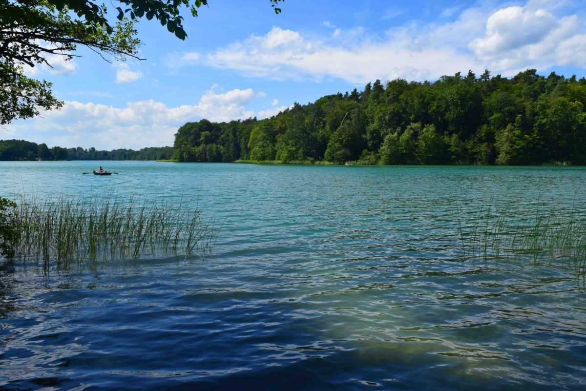 Liepnitzsee: Der klare Türkise bei Wandlitz