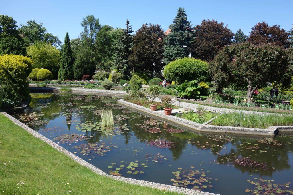 Botanischer Garten Breslau