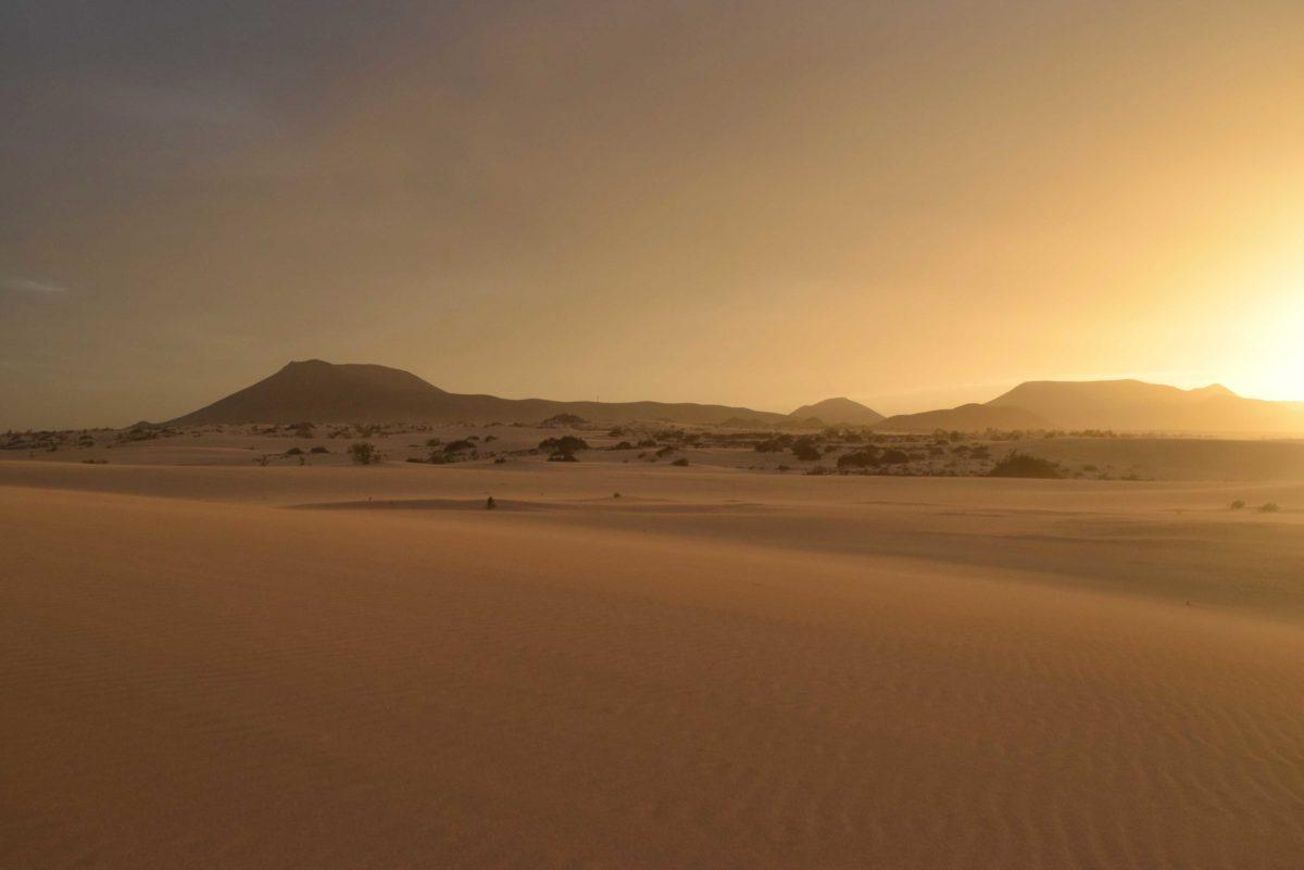 Panoramatour auf Fuerteventura: Dünen, Höhlen & Streifenhörnchen