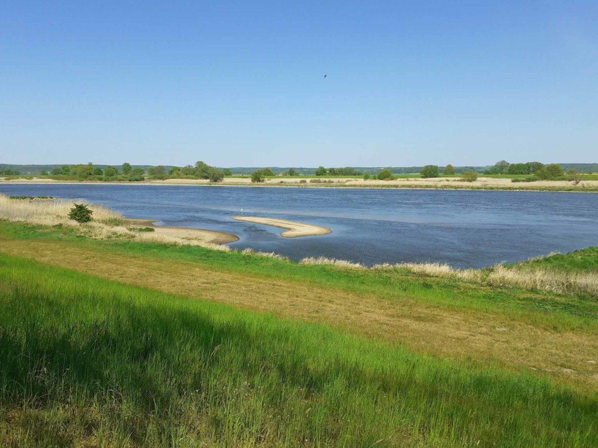 Oder-Neiße-Radweg: Radtour im Nationalpark Unteres Odertal