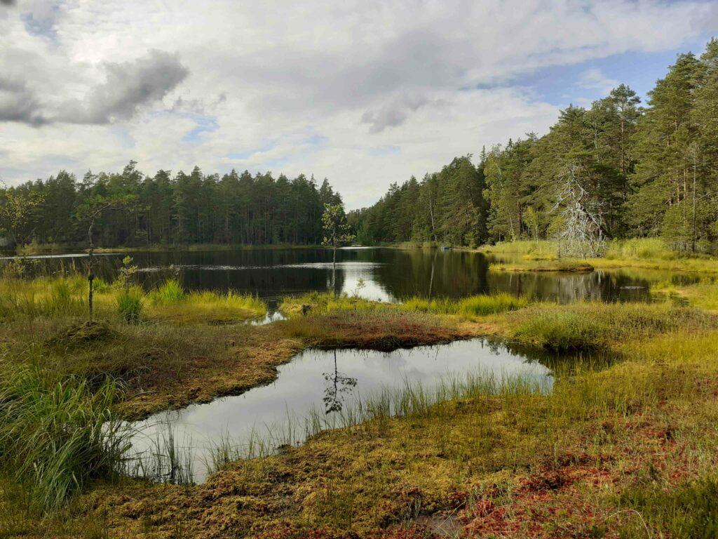 Siikajärvi bei Veikkola